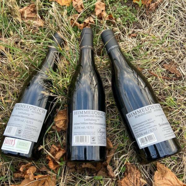 Weinpaket Grüner Veltliner Leithaberg DAC Himmelreich